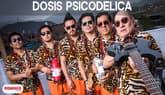 Dosis psicodélica