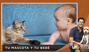 ¿Cómo preparar a tu mascota ante la llegada de un bebé?