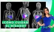 Vive Más: ¿Cómo cuidar el hígado?