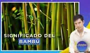 Señales con Jhan Sandoval: Significado del bambú [PARTE 2]