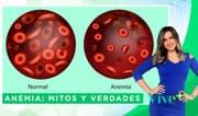 Vive Más: Anemia: mitos y verdades