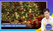 Señales con Jhan Sandoval: ¿Dónde colocar el árbol de navidad según el feng shui?