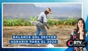 Balance y perspectivas del sector agrario para el 2020