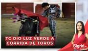 """Jorge Pérez: """"Si a las personas no les gusta las corridas de toros, nadie les obliga a ir"""""""