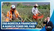 FAE-Agrícola financiará a agricultores del país