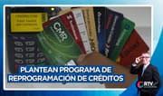 Ejecutivo plantea programa de reprogramación de créditos