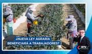 ¿Nueva ley agraria podrá beneficiar a trabajadores del campo?