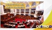 Cuatro D: Perspectiva del nuevo Congreso