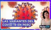 ¿Con cuántas variantes del COVID-19 convivimos en Perú y cuáles son las más peligrosas? | Ruta CTi