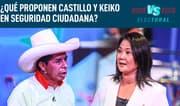 """Pedraza: """"El plan de Castillo es menos logrado respecto al del fujimorismo"""""""
