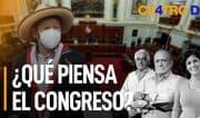 Cuatro D: ¿Qué piensa el Congreso?